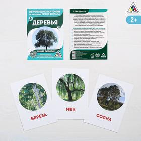Обучающие карточки по методике Г. Домана «Деревья», 12 карт, А6