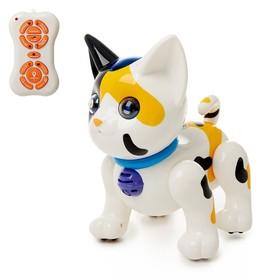 Робот радиоуправляемый 'Котёнок', русский звуковой чип, цвета МИКС Ош