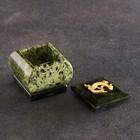 """Шкатулка """"Коронованная ящерица"""", 5х5х5 см, натуральный камень, змеевик"""