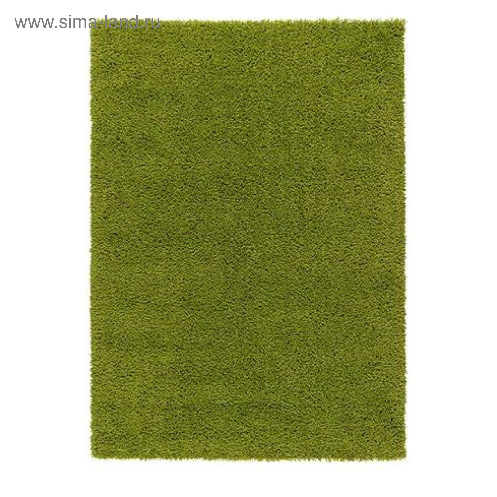 Зелёный яркий цвет