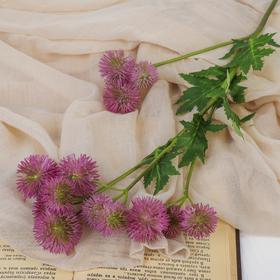 "Decor ""Branch haemanthus"" 3*60 cm, pink"