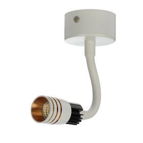 Спот «Круг», 3 Вт, LED, 4 000 К, цвет белый/золото