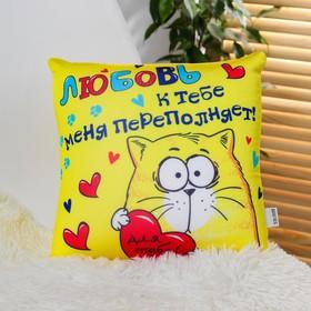 Подушка-антистресс «Любовь к тебе меня переполняет!», котэ