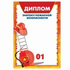 Диплом знатока пожарной безопасности, 14,8х21 см