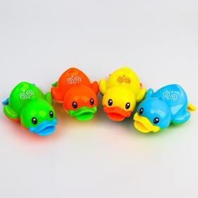 Заводная игрушка «Утёнок», цвет МИКС