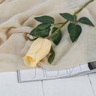"""Цветы искусственные """"Роза Карина"""" 4*46 см, кремовый"""