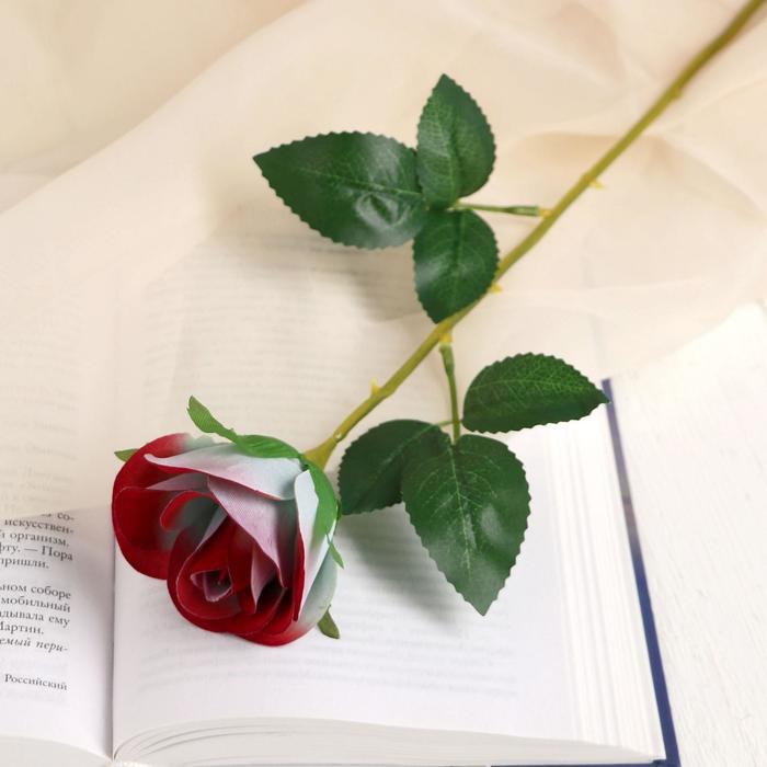 """Цветы искусственные """"Роза Аква"""" 5*40 см, малиновый - фото 4456006"""