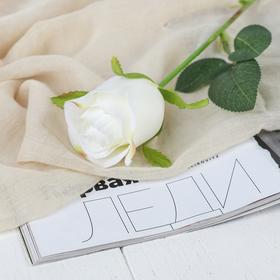 """Artificial flowers """"rose Aqua"""" 5*40 cm, white"""