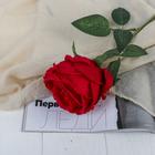 """Цветы искусственные """"Роза Охара"""" 8,5*56 см, красный"""