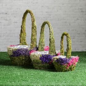 Набор корзин «Соцветие», 3 шт, 23×16×10/29, 18×12×8/24, 13×7×7/20 см, трава, сухоцветы