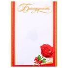 """Благодарность """"Поздравительная"""" роза"""