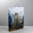 Пакет полиэтиленовый с петлевой ручкой «Медведь», 40 × 45 см - фото 308983782