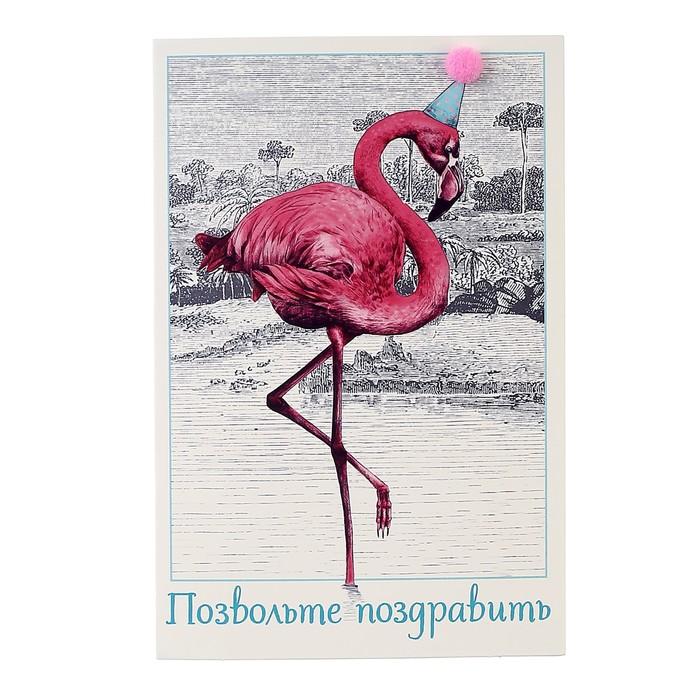 Зимой, открытки с днем фламинго