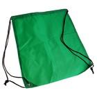 Рюкзак- мешок для обуви, зеленый, со шнурком