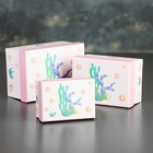Set 3in1 boxes, 11 x 15.5 x 8 - 8 x 11 x 5.5 cm