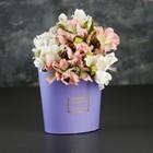 Переноска для цветов 22 х 17,5 х 10 см - фото 700779