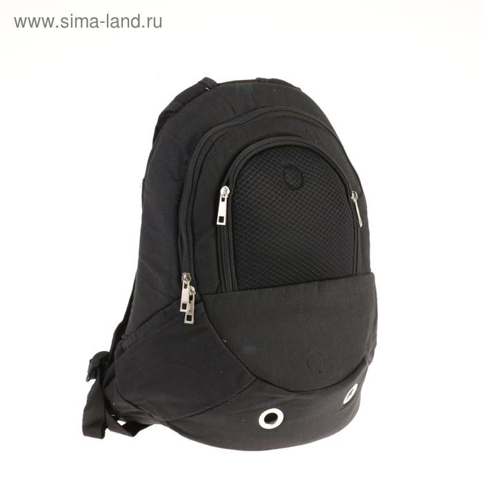 Рюкзак для переноски животных, 36 х 14,5 х 41 см, черный