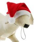 Колпак новогодний для собак, размер XS-S, длина 18, обхват морды 24 см
