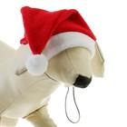 Колпак новогодний для собак, размер M-L, длина 24 см, обхват морды 30 см