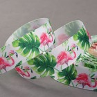 Лента репсовая «Фламинго», 25 мм, 18 ± 1 м, цвет зелёный/розовый