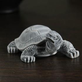 "Сувенир ""Черепаха малая №2"" 3,5см"