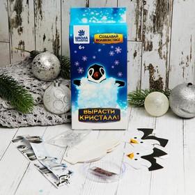 Set for growing crystal Penguin