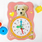 Watch baby learning Animals, MIX
