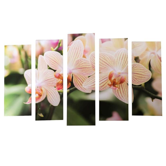 """Картина модульная на подрамнике """"Полосатая орхидея""""  (2-25х63; 2-25х70; 1-25х80) 125х80см"""