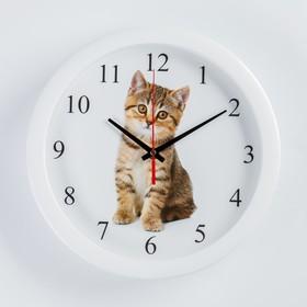 """Часы настенные, серия: Животный мир, """"Котенок"""", плавный ход, d=28 см"""