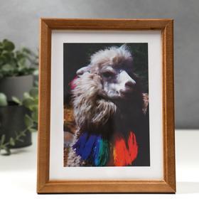 Photo frame-15x20 cm (7N68) walnut