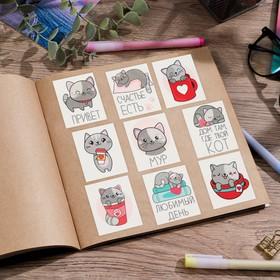 Наклейки бумажные «Котик» , 11 × 16 см Ош