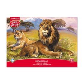 Альбом для рисования А4, 30 листов на клею ArtBerry «Саванна», обложка мелованный картон 170 г/м2, блок 120 г/м2