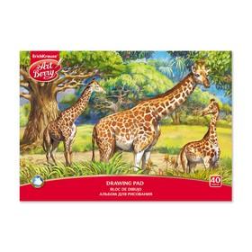 Альбом для рисования А4, 40 листов на клею ArtBerry «Саванна», обложка мелованный картон 170 г/м2, блок 120 г/м2