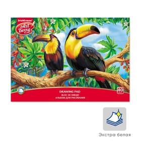 Альбом для рисования А4, 40 листов на клею ArtBerry «Экзотические птицы», обложка мелованный картон 170 г/м2, жёсткая подложка, блок 120 г/м2