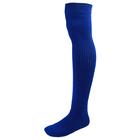 Гетры для хоккея с мячом с носком взрослые, цвет синий