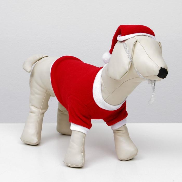 Костюм для собак Новогодний колпак + кофточка, S (ДС 19-21 см, ОШ 26 см, ОГ 32-34 см) - фото 725613240