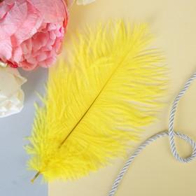 Перо для декора, размер 24 см, цвет желтый