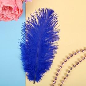 Перо для декора, размер 24 см, цвет синий