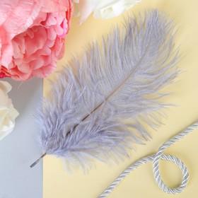 Перо для декора, размер: 24 см, цвет серый