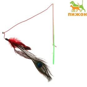 Дразнилка с пером павлина и бубенчиком, длинные перья, 32 см, микс цветов