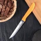 "Knife kitchen ""Multi"", blade 12.5 cm, MIX color"