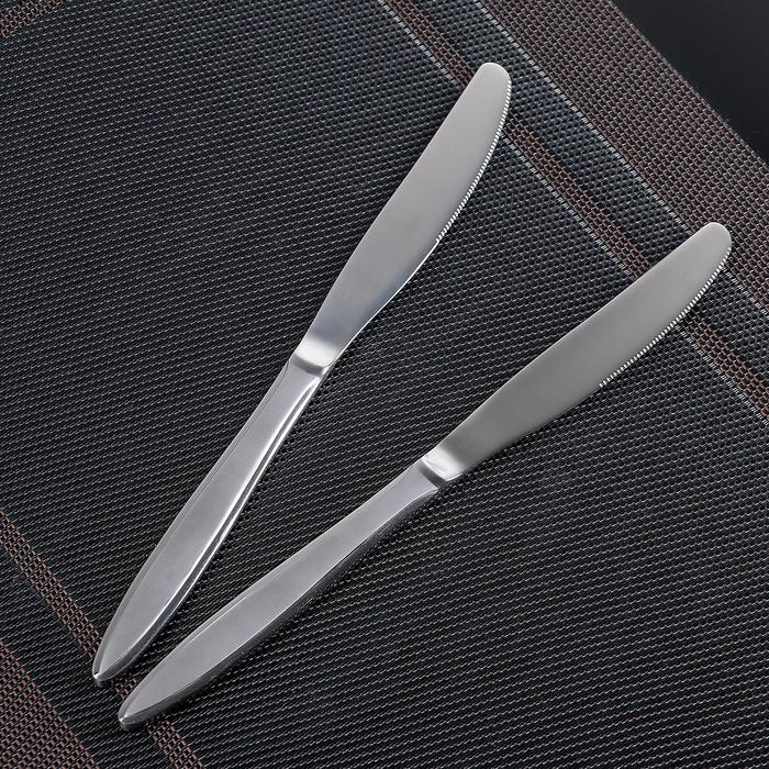 Набор ножей столовых «Перо», h=20 см, 2 шт - фото 308091010