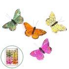 Бабочки перьевые на прищепке «Джакарта», 9 см, набор 12 штук