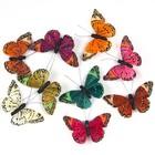 Бабочки перьевые на прищепке «Бали», 10,5 см, набор 9 штук