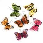 Бабочки перьевые на прищепке «Мадагаскар», 9 см, набор 6 штук