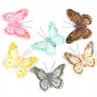 Бабочки перьевые на прищепке «Рассвет», 10 см, набор 6 штук