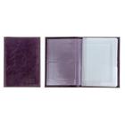 Фиолетовый наплак - 118