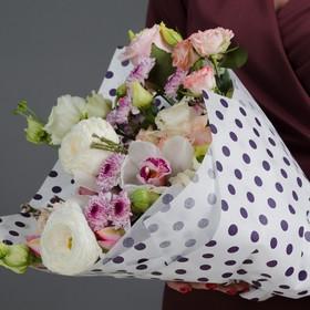 Vellum for flowers polka dot, purple on white, 18 x 0,53 m