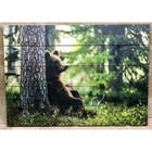 """Картина """"Медведь в лесу"""" 60х40см, МАССИВ,"""
