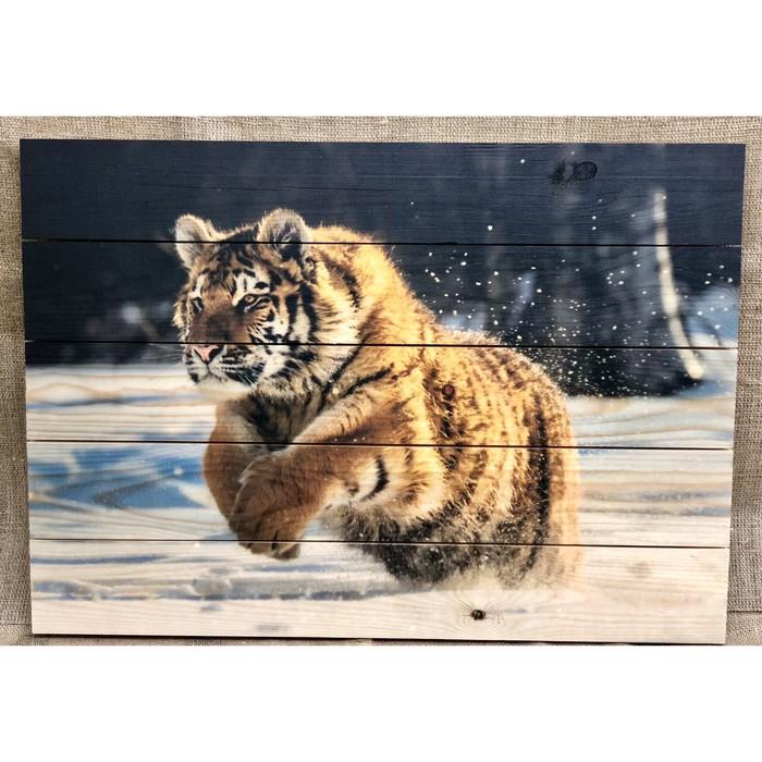 """Картина для бани """"Тигр"""", МАССИВ, 60×40 см"""